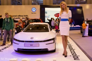 Motor Show 2014 (11)