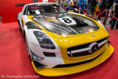 Motor Show 2014 (111)