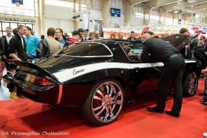 Motor Show 2014 (142)