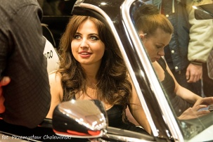 Motor Show 2014 (143)