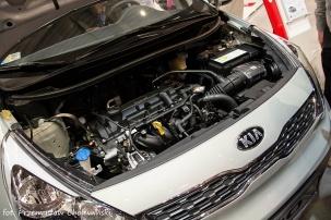Motor Show 2014 (154)