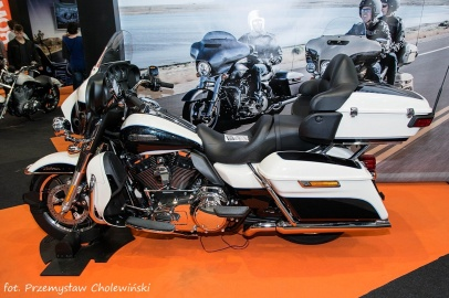 Motor Show 2014 (174)