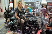 Motor Show 2014 (178)