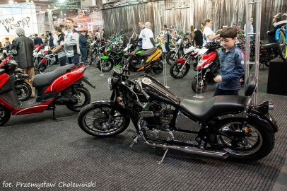 Motor Show 2014 (190)