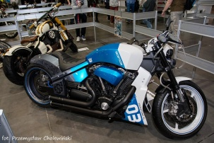 Motor Show 2014 (203)
