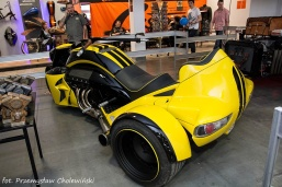 Motor Show 2014 (204)
