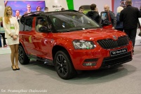 Motor Show 2014 (26)