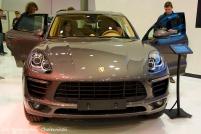 Motor Show 2014 (4)