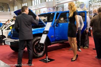 Motor Show 2014 (53)