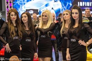 Motor Show 2014 (76)
