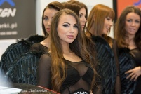Motor Show 2014 (81)