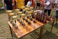 Grand Prix Wielkopolski w pływaniu (4)