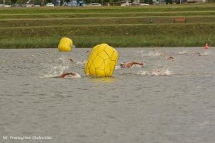 Grand Prix Wielkopolski w pływaniu (44)